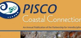 pisco-coastal-connections