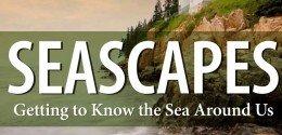 seascapes-960x400