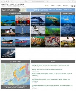 neod-home-page-adj2