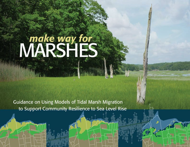 Make Way for Marshes