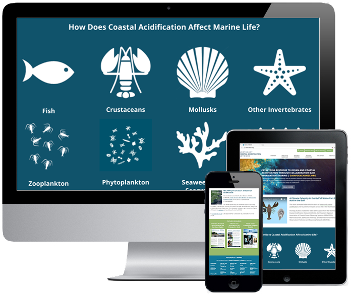 Northeast Ocean Data Portal